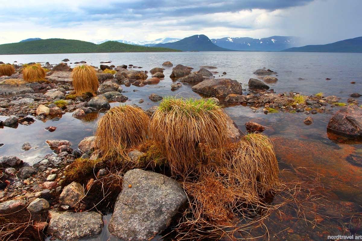 Фенноскандия. Швеция. Лапландия. Озеро Торнетреск.